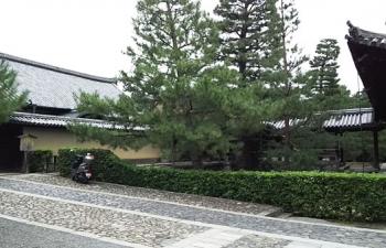 2.大徳寺法堂、大方丈