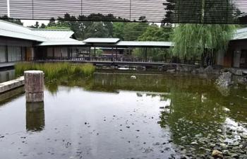 4.中庭池