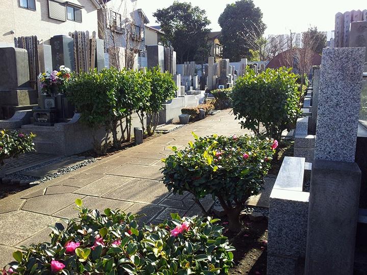 目黒 桐谷 専修寺墓地整備